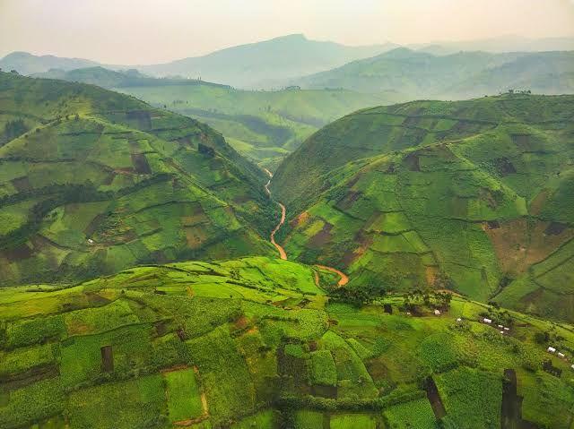 La vie du Mwami Willy Kaembe  Indwe 4 Willy de Masisi (Nord Kivu) en danger
